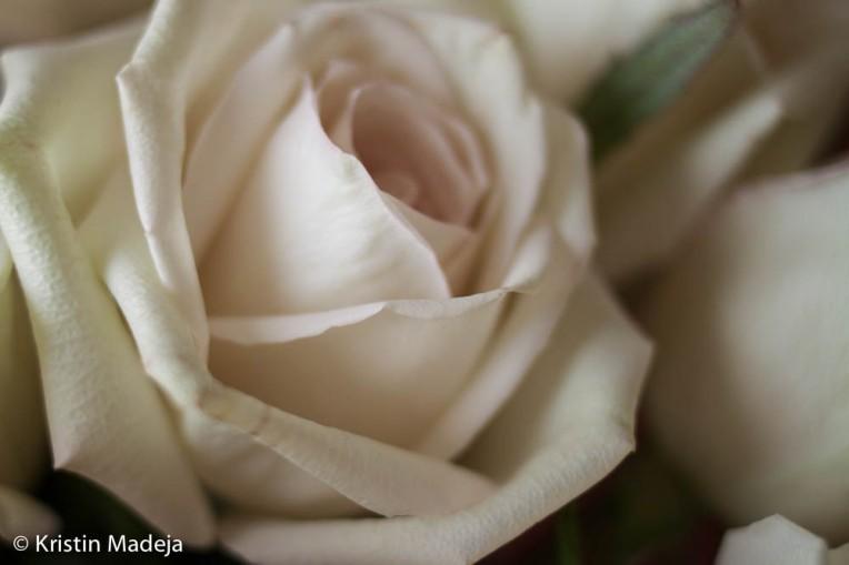 20130819blog1-3